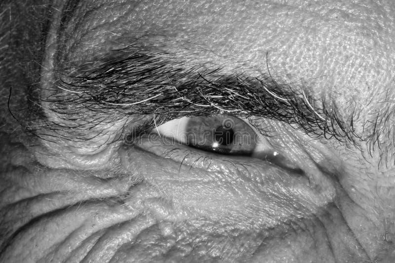 Occhio di un uomo fotografie stock