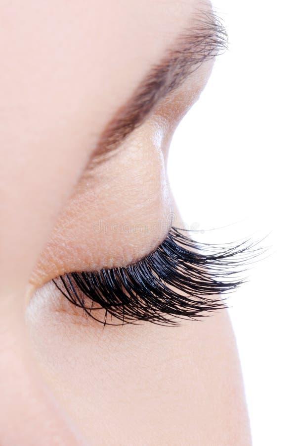 Occhio femminile con i cigli falsi lunghi fotografie stock
