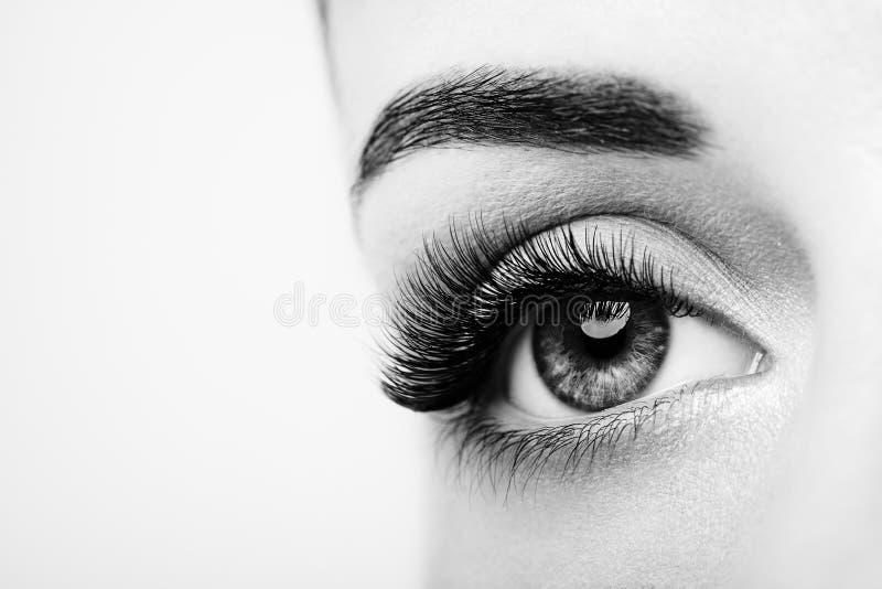 Occhio femminile con i cigli falsi lunghi immagini stock