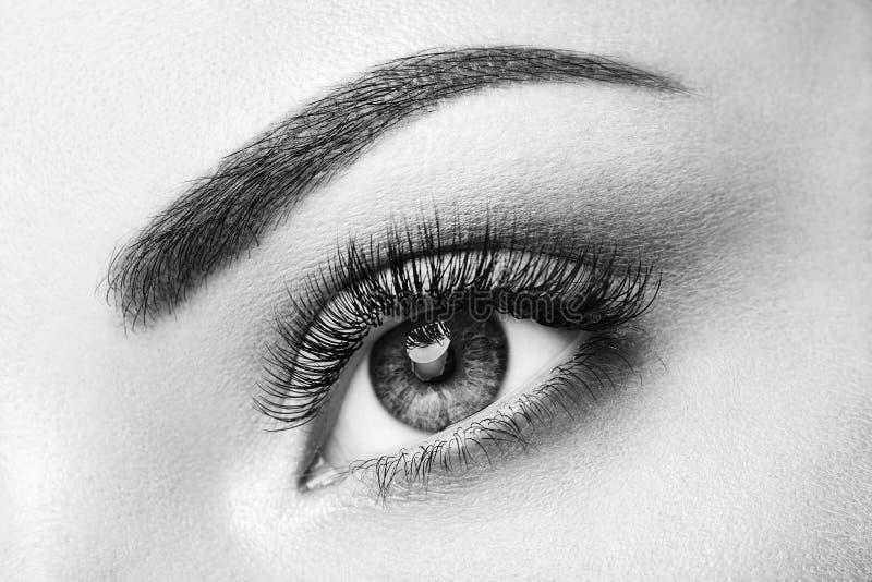 Occhio femminile con i cigli falsi lunghi fotografia stock