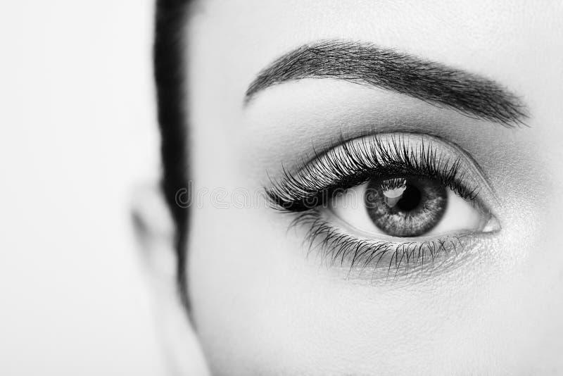 Occhio femminile con i cigli falsi lunghi fotografia stock libera da diritti