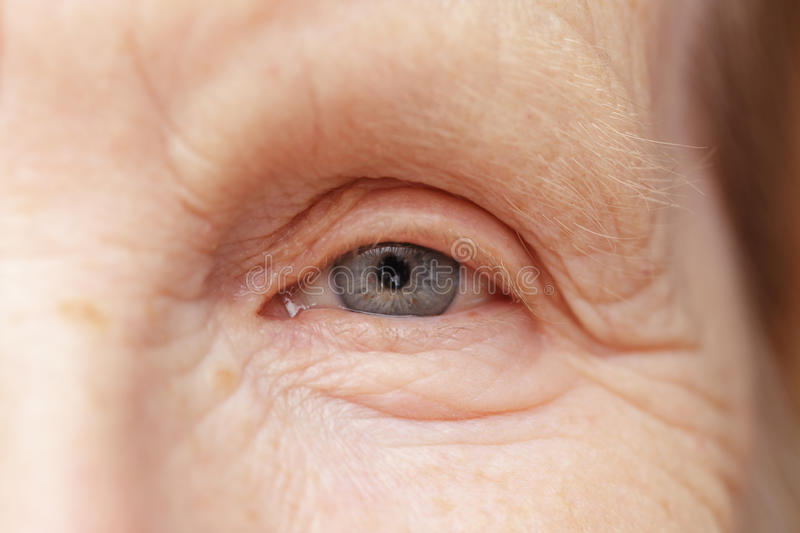Occhio grigio della donna anziana immagine stock