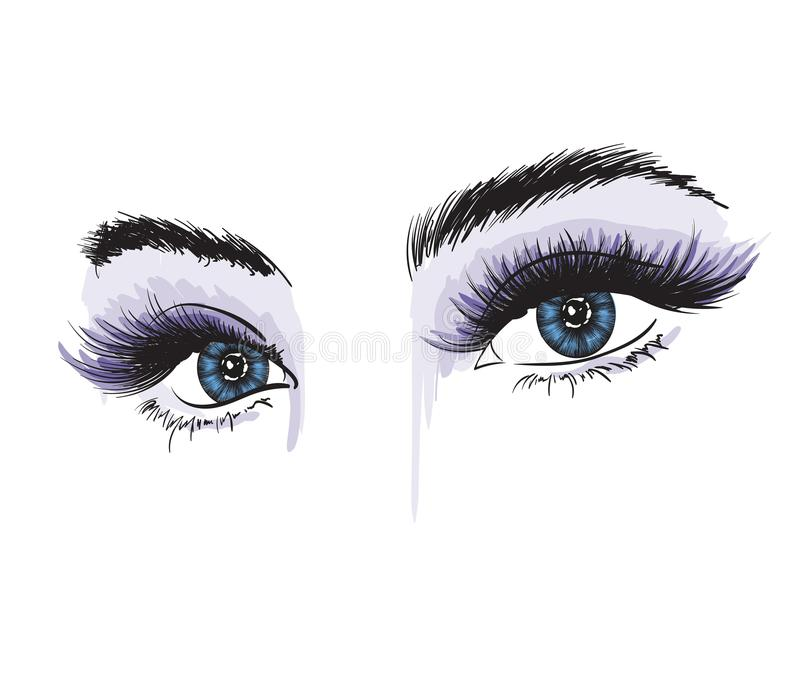 Occhio lussuoso del ` s della donna con le sopracciglia perfettamente a forma di e le sferze complete illustrazione vettoriale