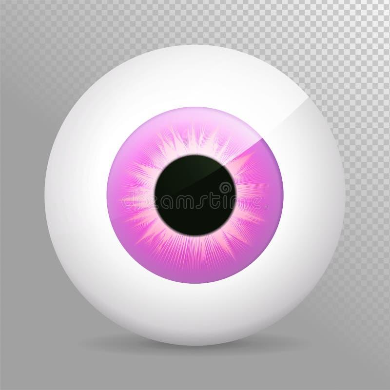 Occhio, porpora Illustrazione viola realistica di vettore del bulbo oculare 3d Sfera umana reale dell'iride, della pupilla e dell royalty illustrazione gratis