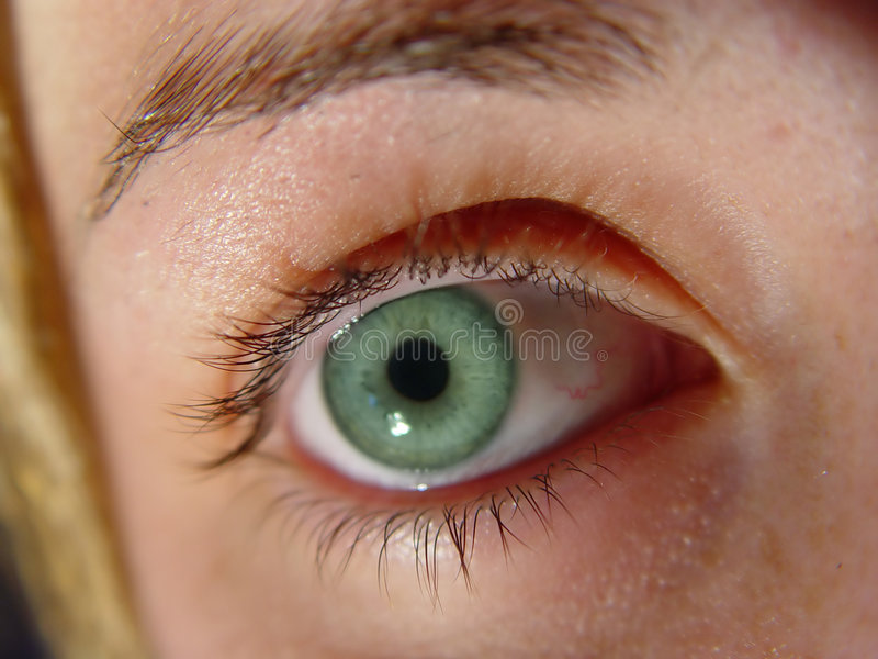 Occhio verde del primo piano fotografia stock