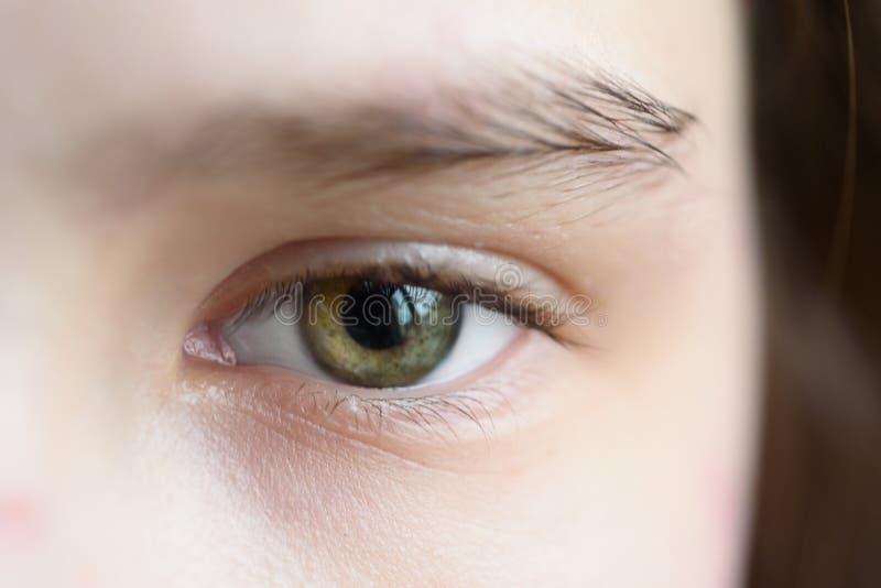Occhio verde della fine della ragazza sulla macro fotografia stock