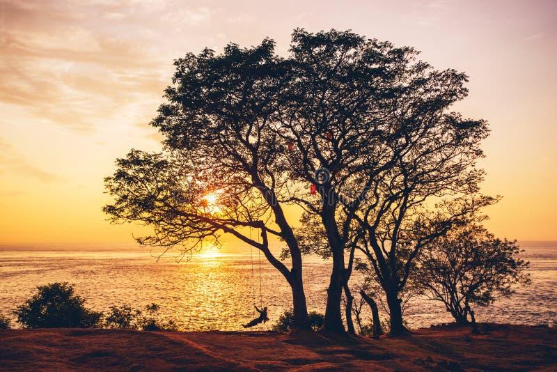 Oceaan de rust van de schommelingsboom zonsondergang stock afbeeldingen