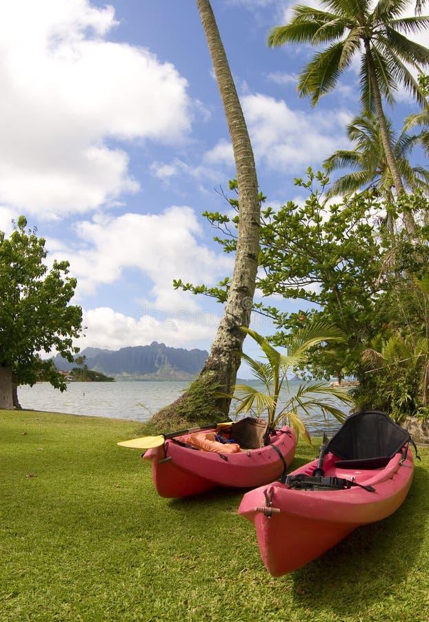 Oceaan Kajaks bij Kaneohe Baai, Hawaï royalty-vrije stock foto