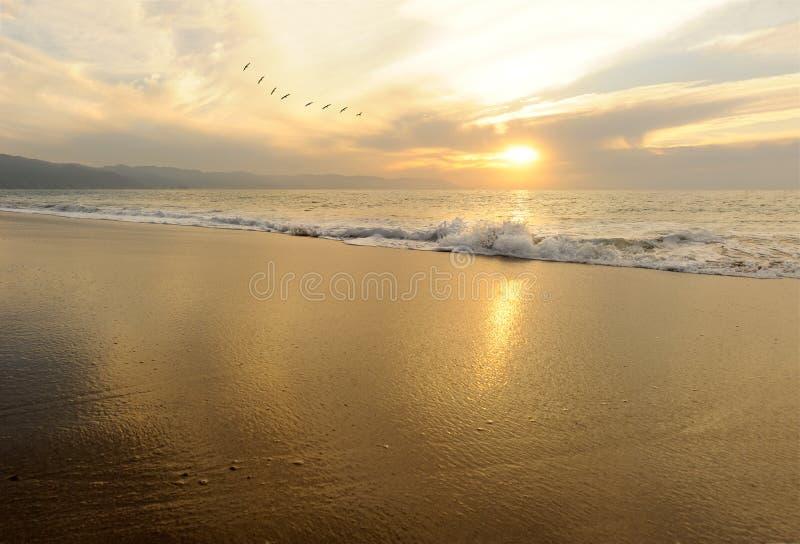Oceaan Sunset royalty-vrije stock foto's