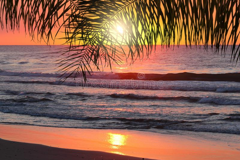 Oceaan tropische zonsondergang stock afbeeldingen