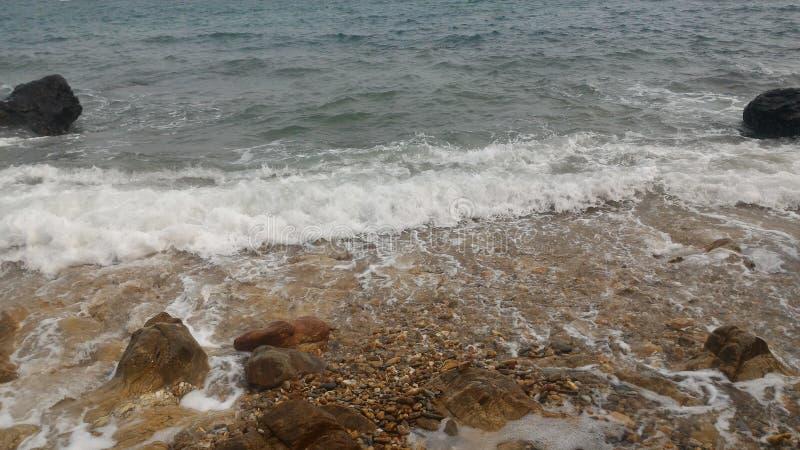 Oceaan van het nieuwe leven stock afbeeldingen