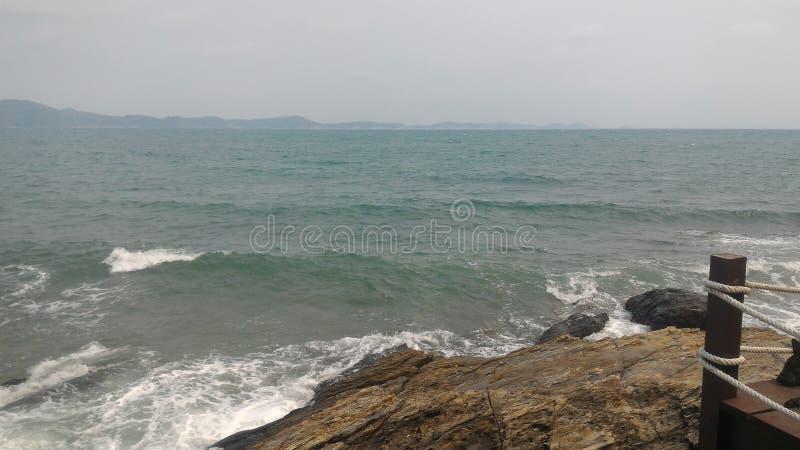 Oceaan van het nieuwe leven stock fotografie