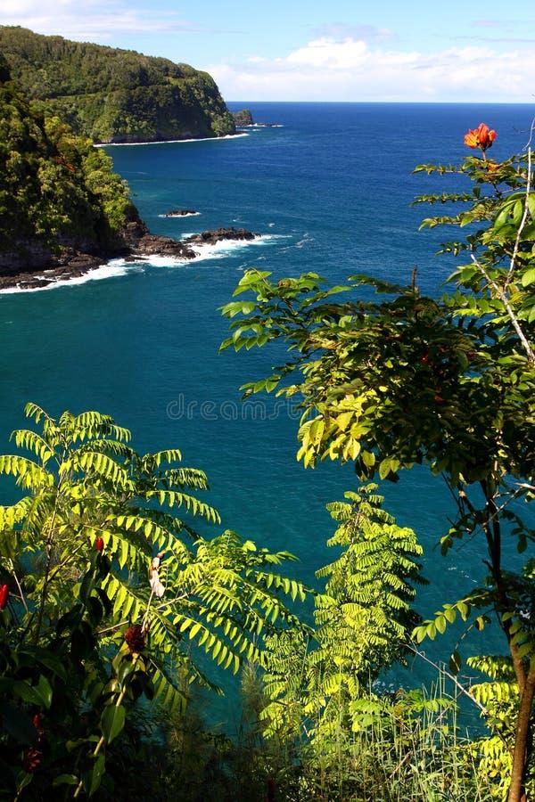 Oceaan weg, Maui stock afbeeldingen