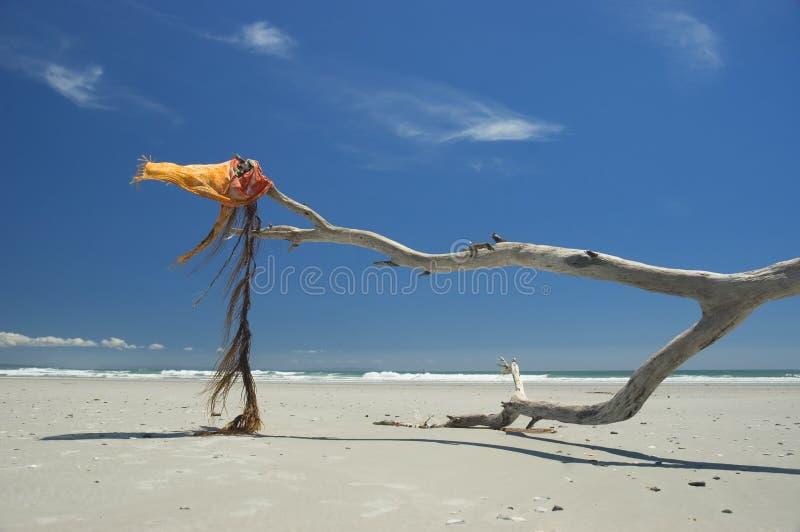 Oceaan wind royalty-vrije stock afbeelding