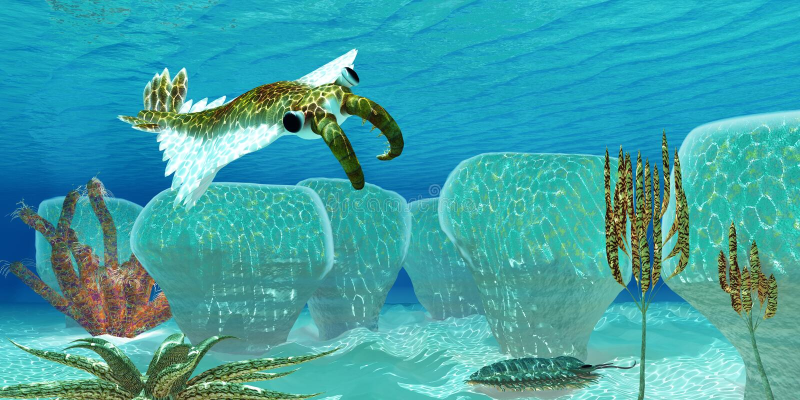 Oceaananomalocaris royalty-vrije illustratie