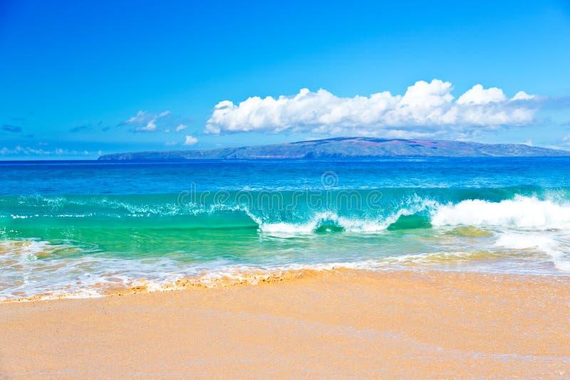 Oceaanbranding in Maui Hawaï stock afbeeldingen