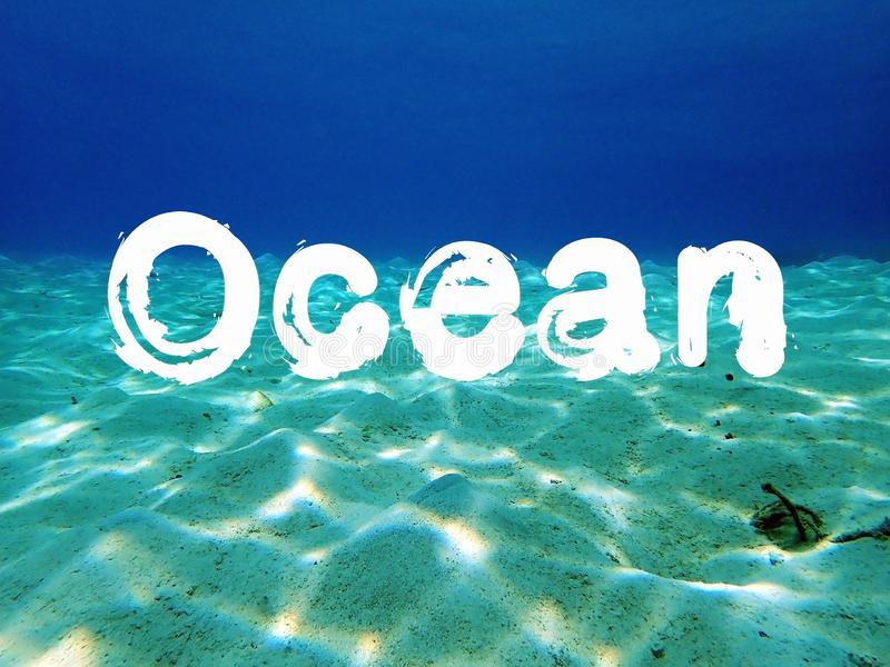 Oceaancitaat met mooi glashelder water op seafloor van Tunku Abdul Rahman Park, Kota Kinabalu Sabah, Maleisi? stock foto's