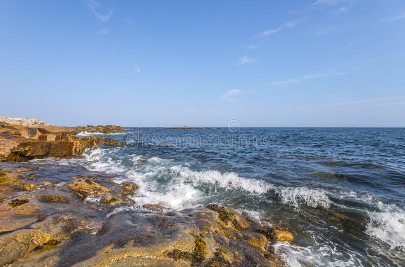 Oceaangolven die tegen een rotsachtige kust verpletteren royalty-vrije stock foto's