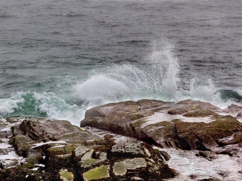Oceaangolvenplons tegen kustrotsen in Jamestown Rhode Island royalty-vrije stock foto's