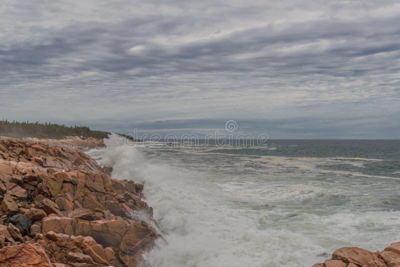 Oceaankust stock foto