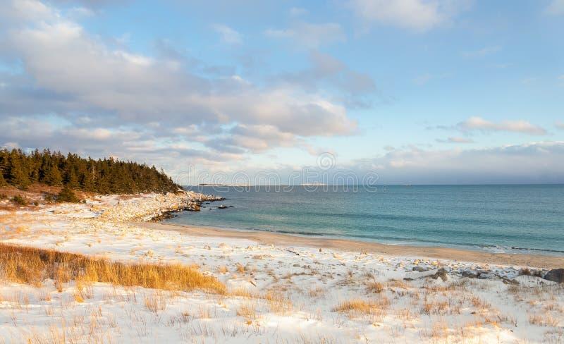 Oceaankust op een de winterdag stock foto's