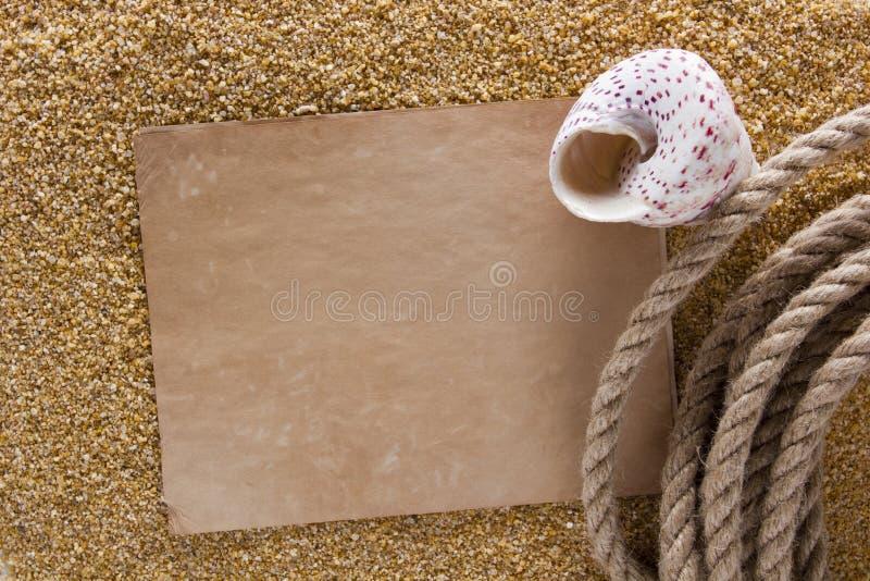 Oceaanshell op het zand stock afbeelding