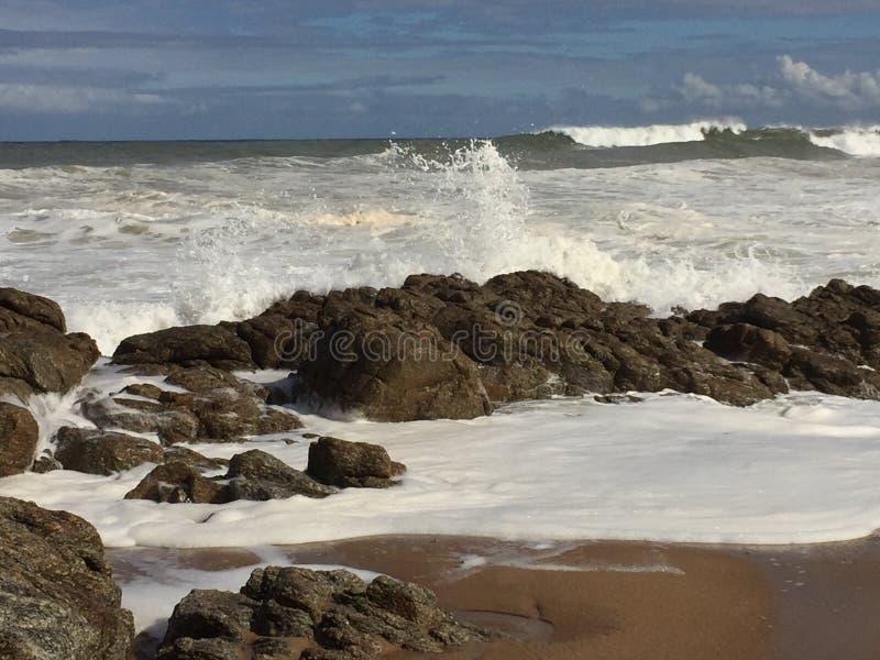 ocean obrazy royalty free