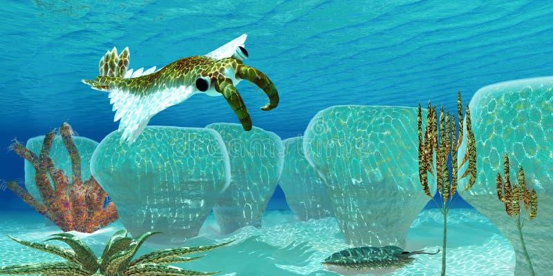 Ocean Anomalocaris Stock Illustration Illustration Of