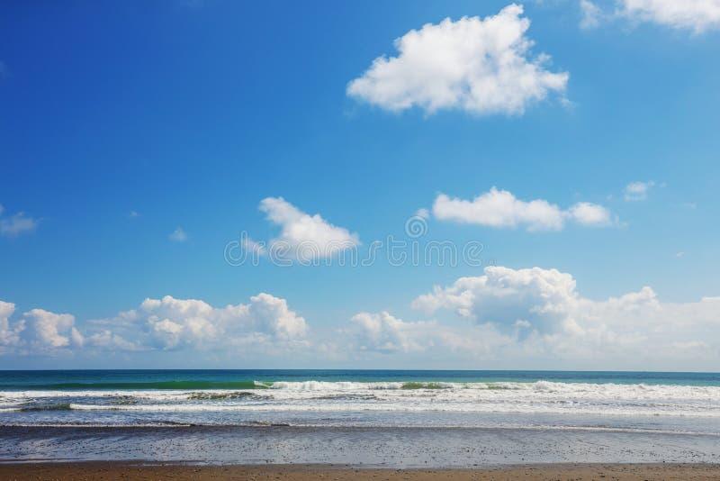 Ocean. Beach on the ocean coast royalty free stock images