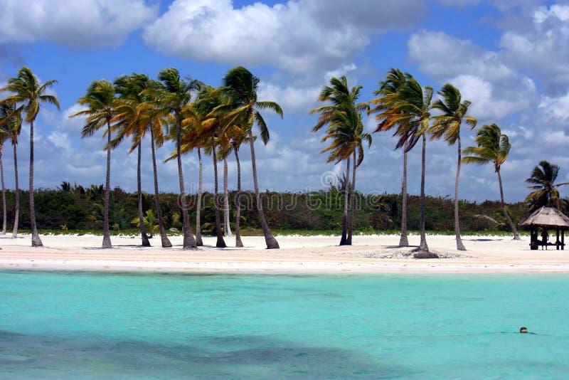 Download Ocean and beach panorama stock image. Image of getaway - 19480817