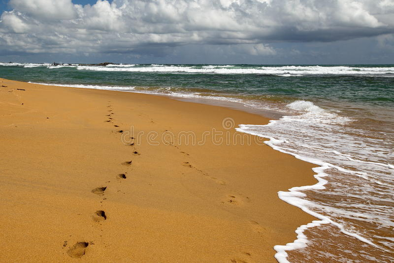 The ocean royalty free stock images