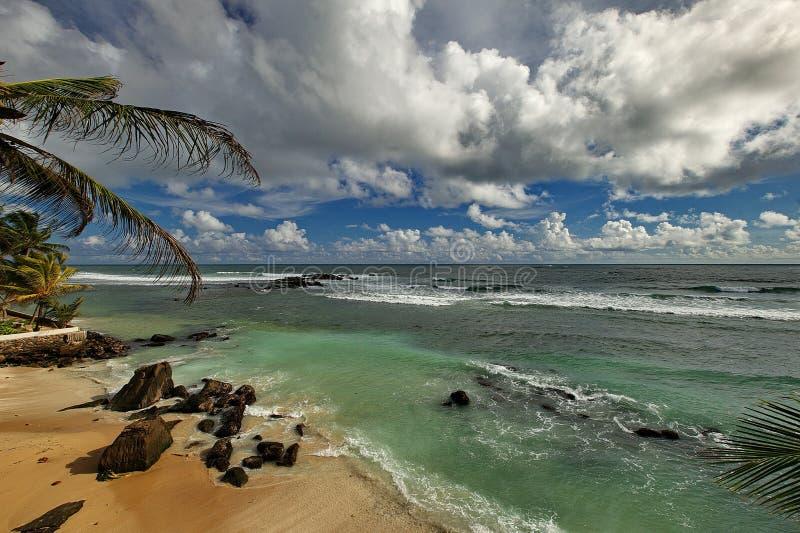 The ocean royalty free stock photo