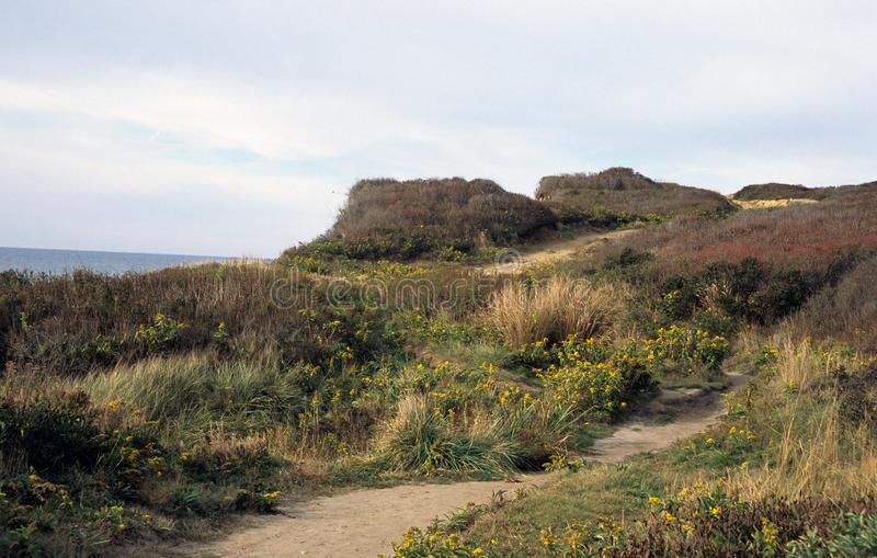 Ocean Bluff Trail. Shadmoor State Park, Montauk, New York. Winding sandy trail along bluffs at ocean`s edge stock photo