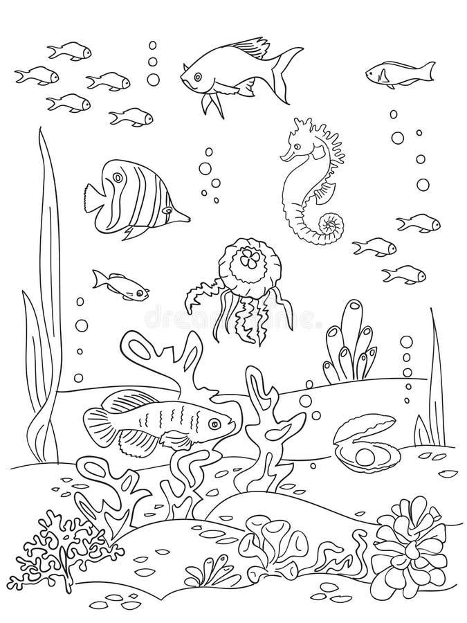Ocean Bottom Sketch Stock Vector Illustration Of