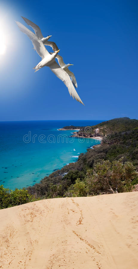 Download Ocean Breeze Royalty Free Stock Photos - Image: 15525128