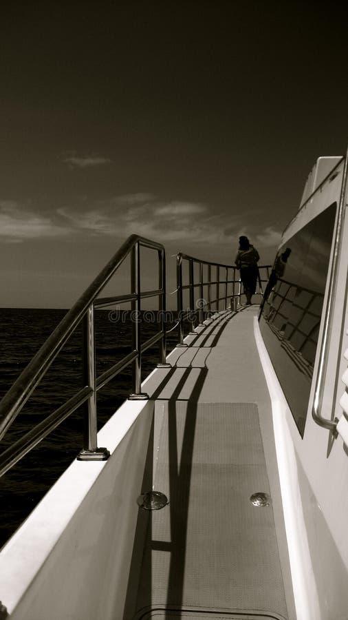 Ocean Cruise royalty free stock image