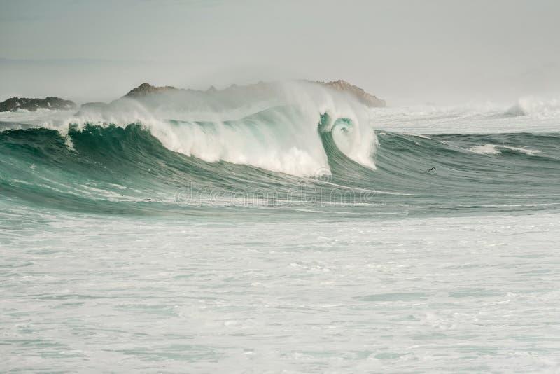 Ocean fala przy usa wybrzeże pacyfiku obraz stock