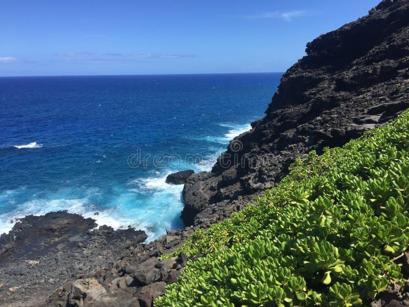 Ocean falezy zdjęcie stock