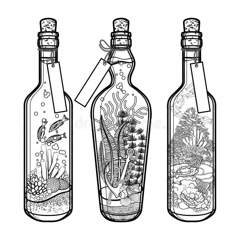 Ocean fauny w butelkach i flory ilustracja wektor