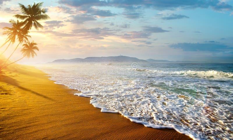 Ocean i Sri Lanka royaltyfria foton