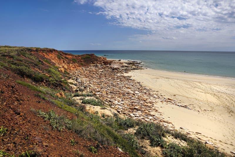 Ocean Indyjski w zachodniej australii z czerwonymi falezami plaża zdjęcia royalty free