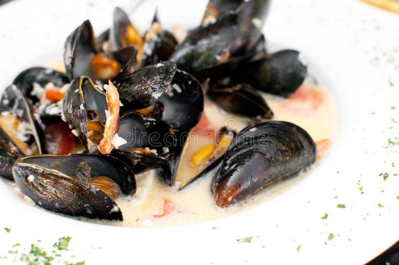 Download Ocean mussels dish cooked stock image. Image of dish - 32387617