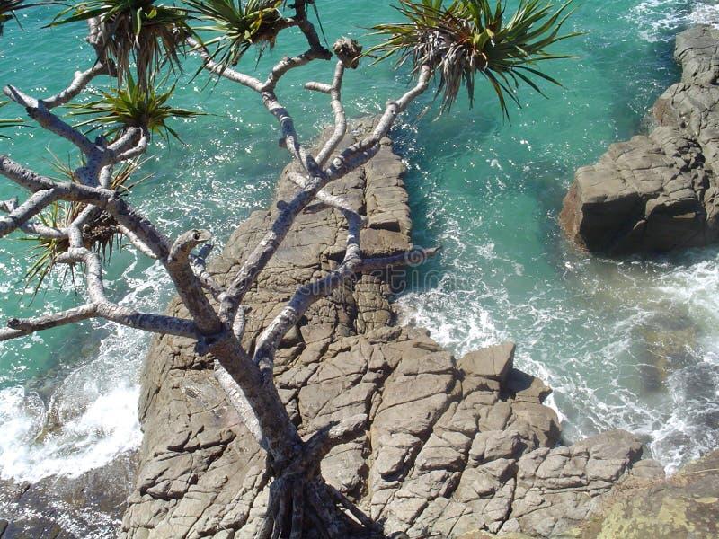 Download Ocean At Noosa Stock Images - Image: 61404
