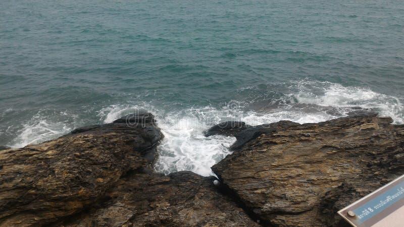 Ocean nowy życie zdjęcie stock