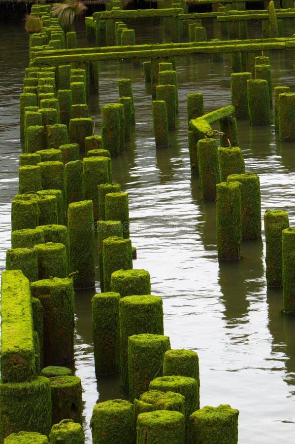 Download Ocean Pier Ruins Far Stock Photography - Image: 15509552