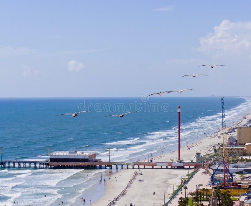 Ocean plaża obrazy stock