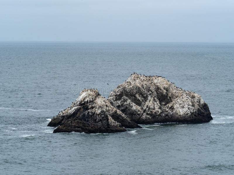 Ocean rock formation with seagulls flocking and resting on a cold day royalty free stock images
