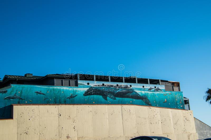 Ocean scene painted on the side of a building showing a large whale and dolphins under water in the ocean royalty free stock photos