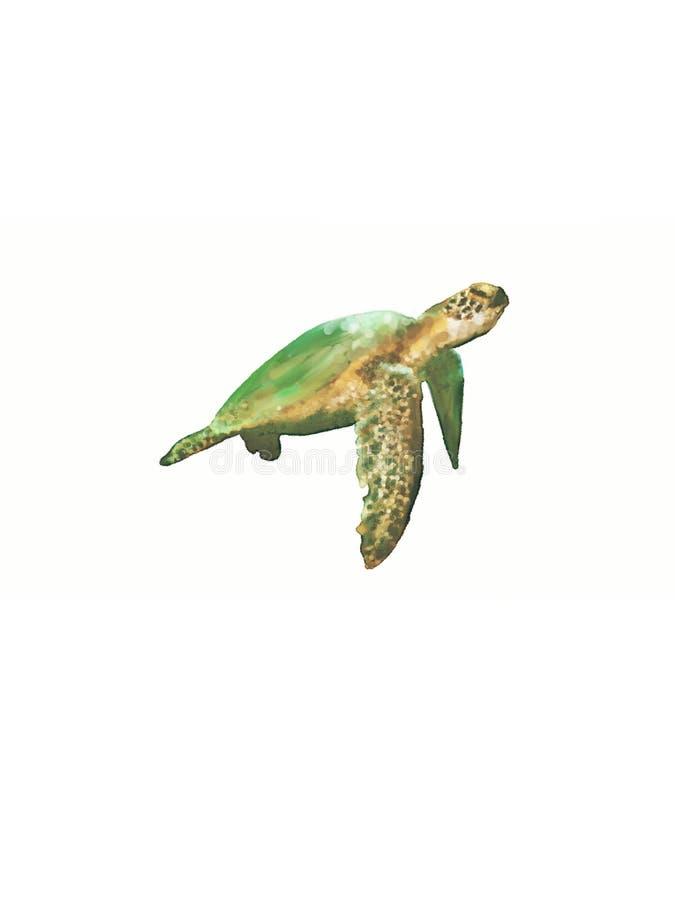 My digital art painting of a sea turtle. Ocean seascape digital art with jellyfish stock photo