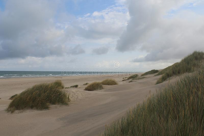 Ocean shore with Marram grass and slippery sand dunes on a cloudy day stock photography